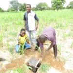 AEI soil sampling