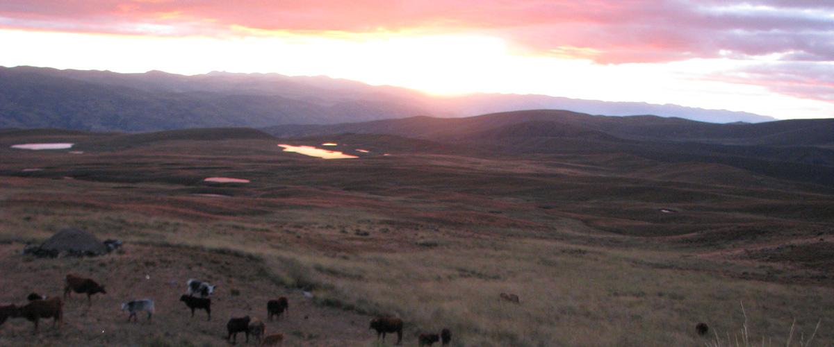 Andes vista